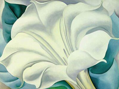 KGE 002 / Georgıa O'Keeffe / The White Flower