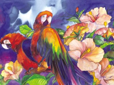 SHE 012 / Hettie SAAIMAN / Çiçekler ve Papağanlar