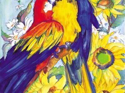 SHE 017 / Hettie SAAIMAN / Papağanlar
