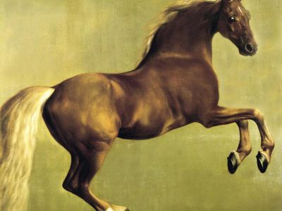 STG 001 / George STUBBS / Whistlejacket